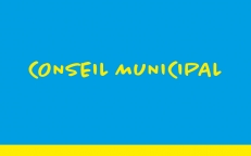 19/04/2021 : Conseil municipal