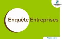 55756_46491_Enquete_entreprises_VLA